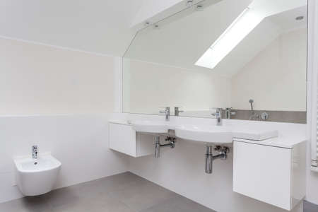 bowl sink: Interior of a white elegant bathroom with double sink