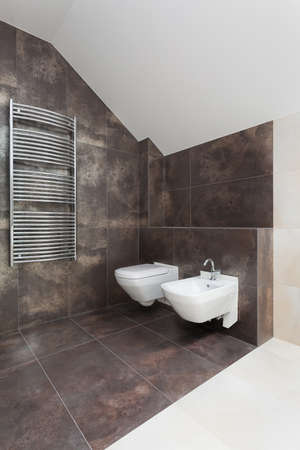 Toilet with a bidet in modern bathroom interior photo