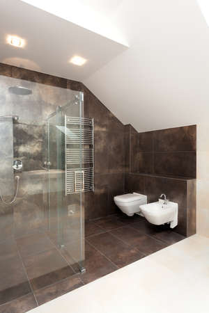 Glass shower in bathroom with brown tiles on walls photo