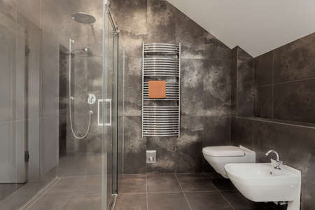 Luxury bathroom inter with huge glass shower Stock Photo - 24568106