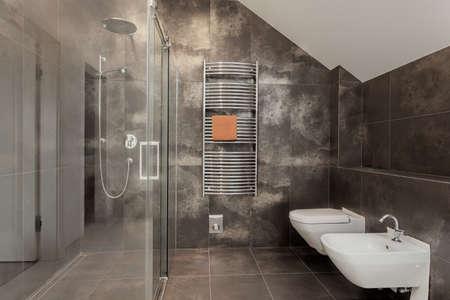 Luxury bathroom interior with huge glass shower Stock Photo - 24568106
