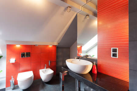 Red bathroom interior with wc, bidet and sink photo