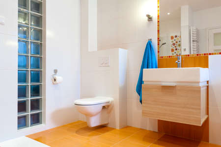 New practical bathroom in contemporary big house Stock Photo - 25626910