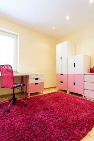 Nice comfortable modern room with pink carpet and furniture for girls Stock Photo - 25626931