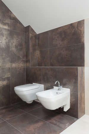 New grey interior with toilet and bidet photo