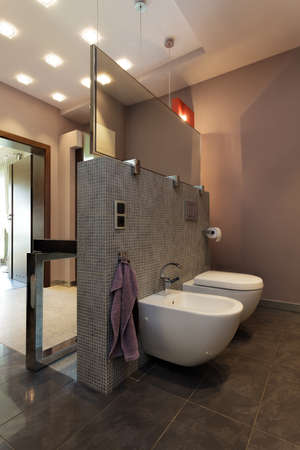 An elegant brown toilet with a closet and a bidet photo