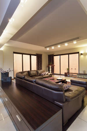 Living room with a huge sofa, vertical view photo