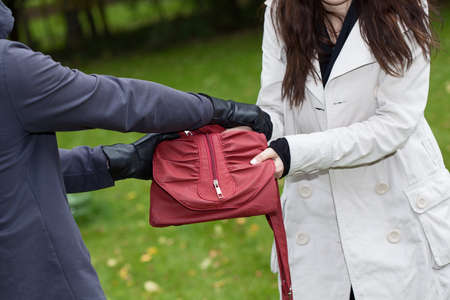 A thief trying to steal a bag from a woman in a park photo