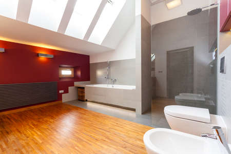 double sink: Interior of a modern bathroom with red wall