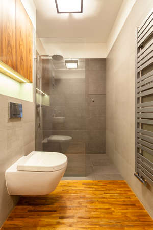 Small toilet with a glass shower, vertical photo