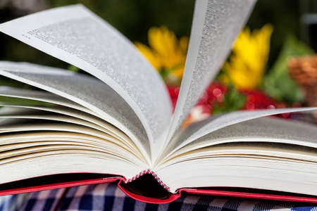Pages of a novel turning in the wind Stock Photo