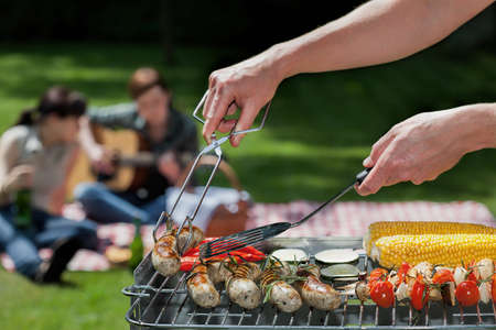 garden barbecue: A summer barbeque with guitar music and singing