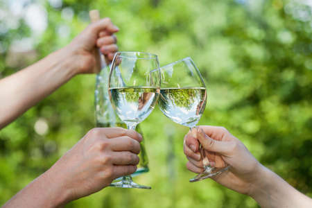 A dinking party with filled wine glasses photo