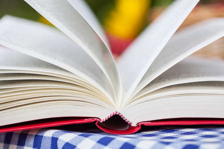 lazyness: A closeup of a book during the wind