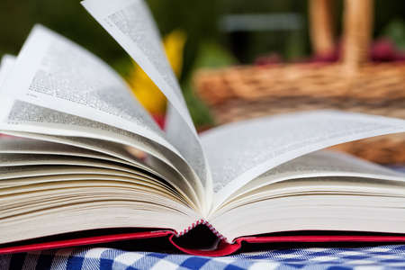 lazyness: An opened red book with a basket in the background