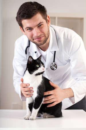 猫とハンサムな獣医の肖像画