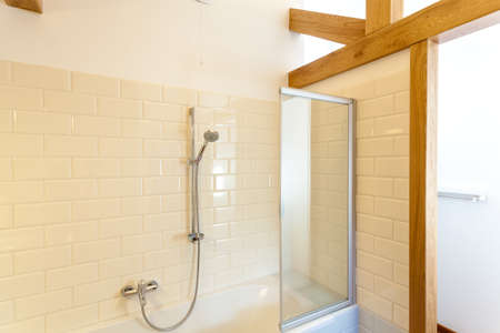 Rain shower in classic white bathroom, horizontal photo