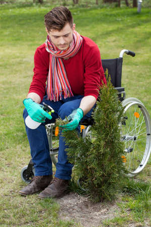spaying: Disabled man working in a garden, vertical