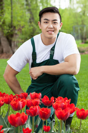 asian tulips: Asian gardener with tulips in a garden Stock Photo