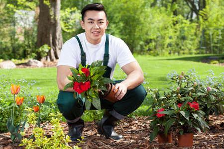 Asian gardener planting flowers in a garden Stock Photo