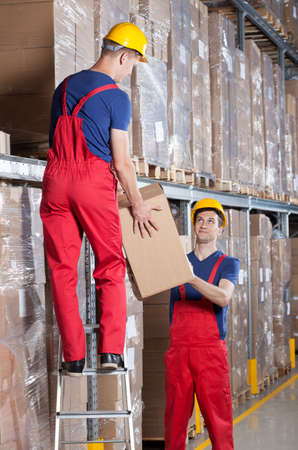 warehouse worker: Storekeepers during work in a warehouse, vertical