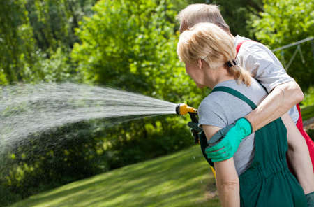 Senior married couple watering the lawn in the garden photo