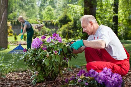 Ouder echtpaar in overalls werken in de tuin