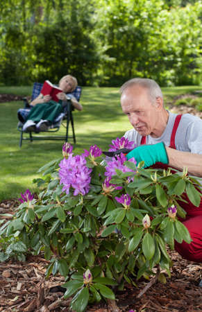 Man cares for flowers while his wife is resting in the garden photo