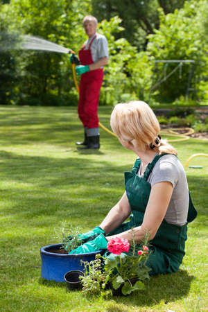 taking a wife: Man watering lawn while his wife is taking care about flowers Stock Photo