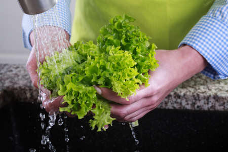 clean water: Housewife cleans a green salad in water