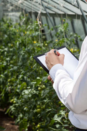 Vertical View Of Garden Manager During Job Stock Photo, Picture And ...