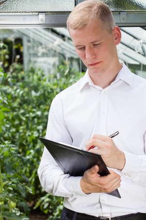 tomate de arbol: Experto Jardín tomando notas en un invernadero Foto de archivo
