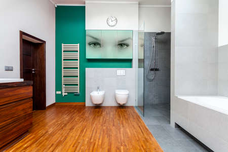 View of modern bathroom with cyan elements photo