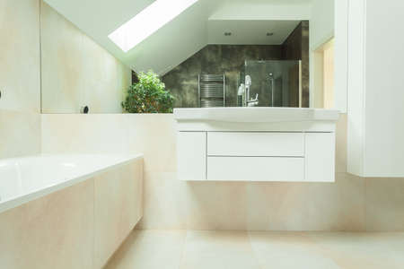 Horizontal view of modern and luxurious bathroom photo