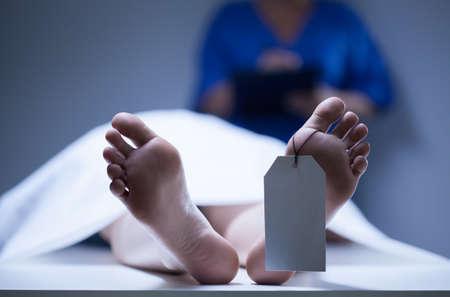 死体の識別の水平方向のビュー
