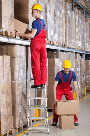 Man standing on ladder while working at height in warehouse