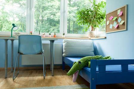 boy room: View of interior of blue boy room