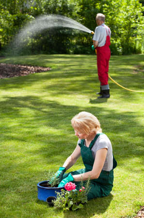 duties: Married couple during everyday duties in garden