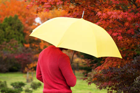 autmn: Man with yellow umbrella in autmn park