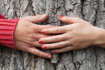 fiancee: Hands of man and his fiancee embracing a tree