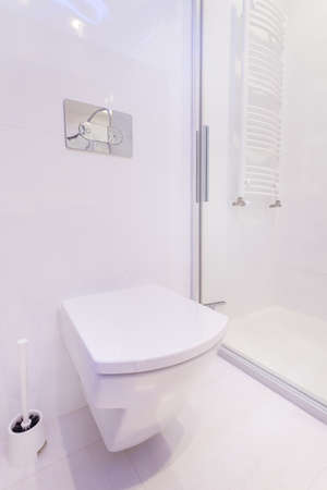 Vertical view of toilet in modern house photo
