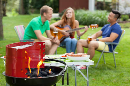 Girl playing the guitar on a barbecue photo