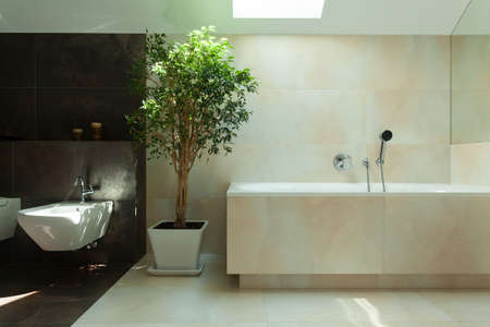 View of minimalist modern bathroom in daylight