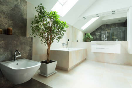 tile floor: View of spacious bright modern house bathroom