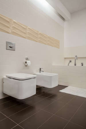 The modern house - toilet and bidet, vertical photo