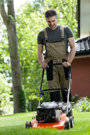 botanical garden: Man mowing the grass in a garden