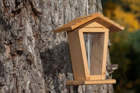 bird feeder: View of bird feeder on a tree