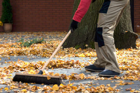 brooming: Brooming the leaves in front of house Stock Photo