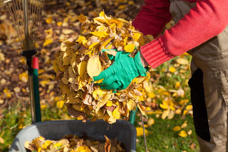 Man cleaning garden from autumnal leaves, horizontal