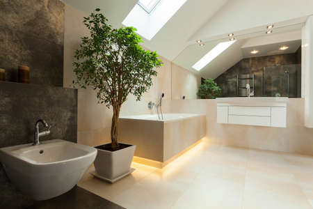 Interior of modern bathroom in new house photo